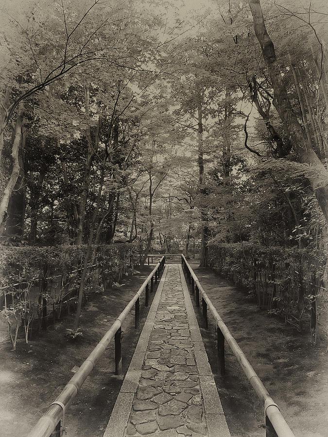 Samurai Photograph - Koto-in Zen Temple Forest Path - Kyoto Japan by Daniel Hagerman