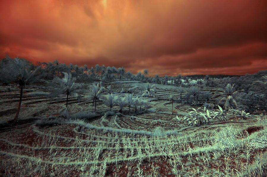 Lanscape Tropical Colour Photograph