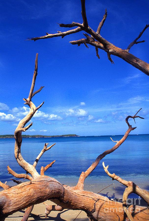 Las Cabezas Bay Photograph - Las Cabezas Bay by Thomas R Fletcher