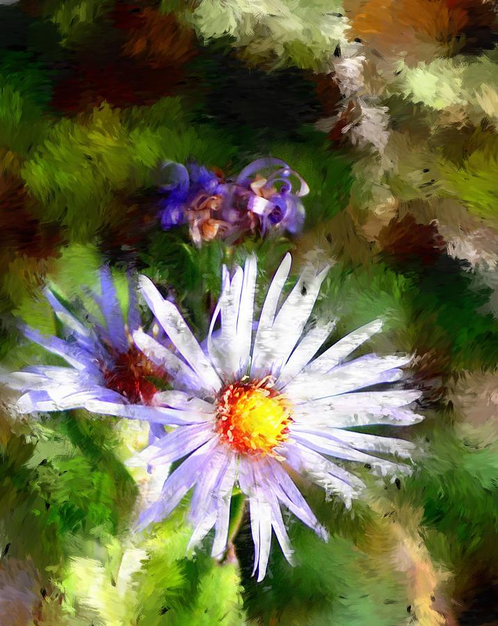 Flower Photograph - Last Rose Of Summer by David Lane