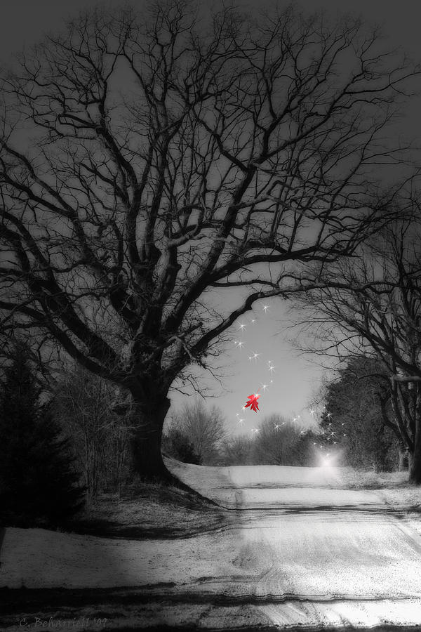 Surreal Digital Art - Last Show  by Cathy  Beharriell