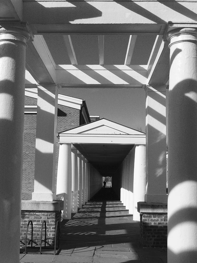 Columns Photograph - Lattice And Shadows by Steven Ainsworth