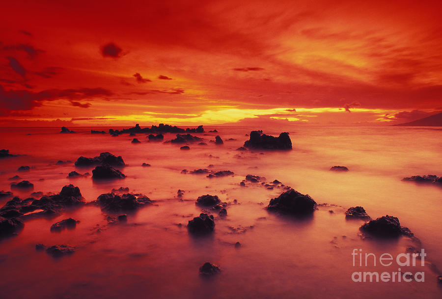 Amaze Photograph - Lava Rock Beach by Dave Fleetham - Printscapes