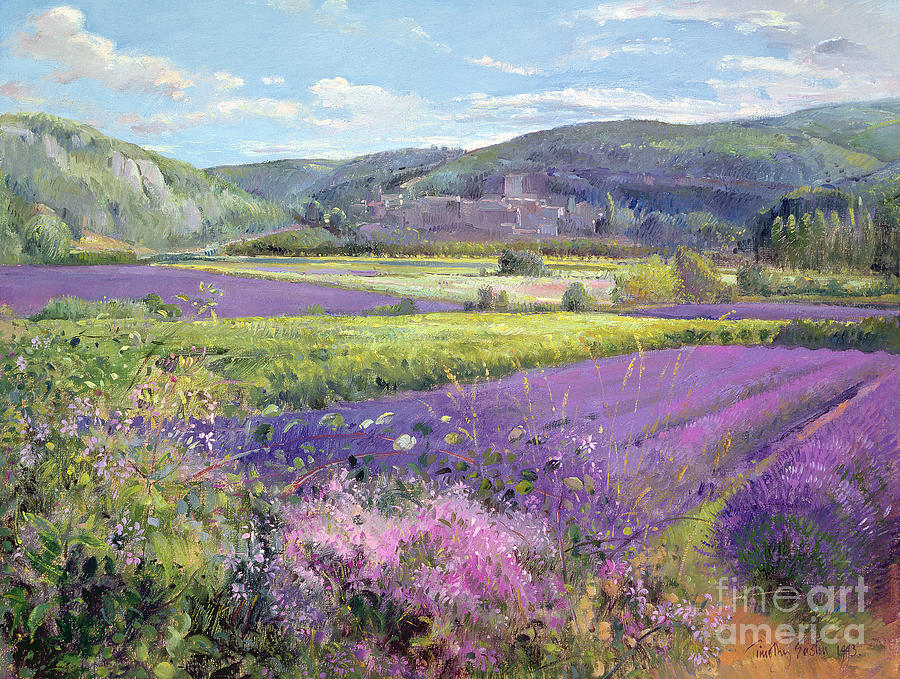 Field; South Of France; French Landscape; Hills; Hill; Landscape; Flower; Flowers; Field; Tree; Trees; Bush; Bushes; France; Provence Painting - Lavender Fields In Old Provence by Timothy Easton