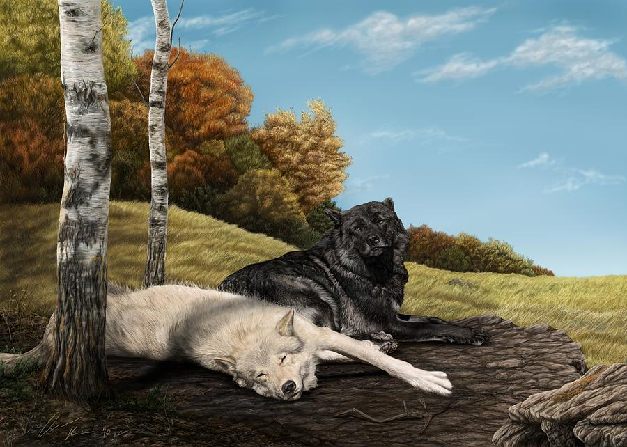 Wolf Digital Art - Lazy Day by Laura Klassen