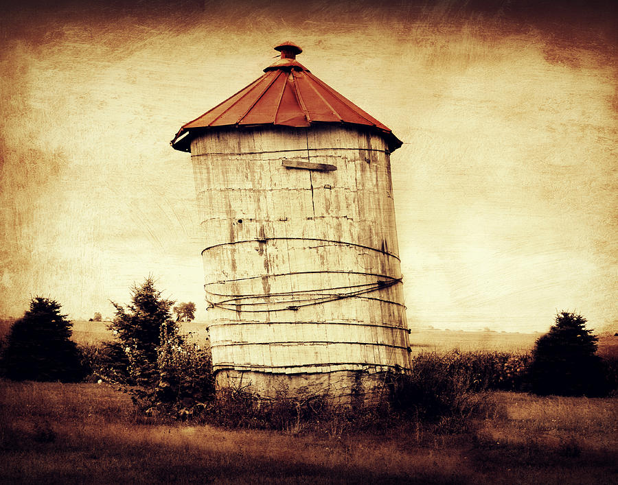 Country Art Photograph - Leaning Tower by Julie Hamilton