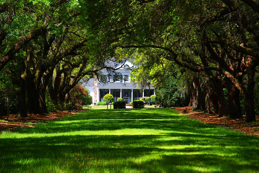 Legare Waring House Charleston Sc Photograph