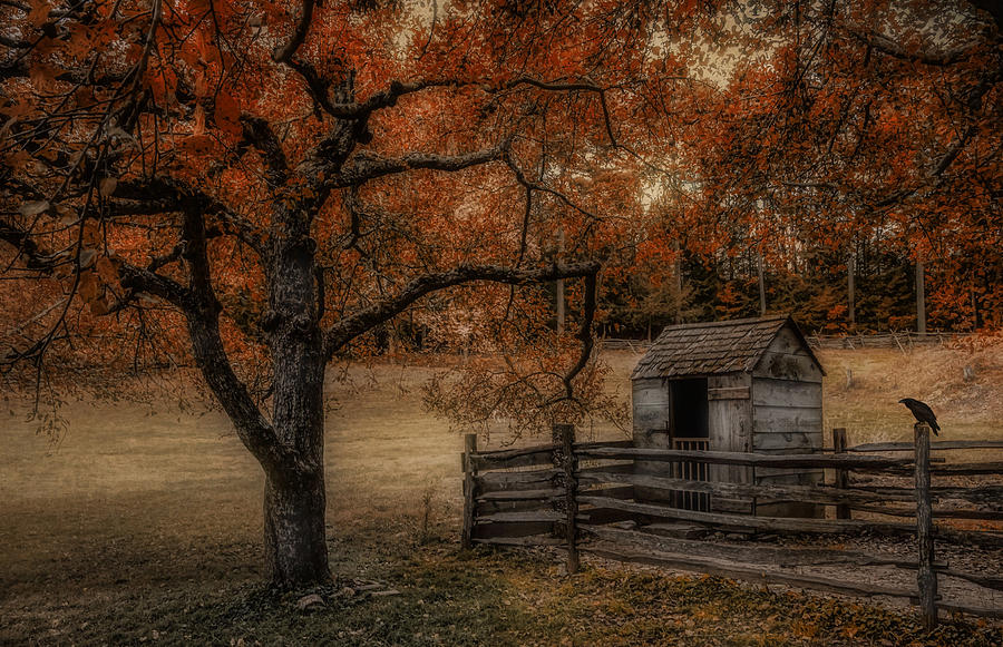 Outhouse Photograph - Legend Of The Fall by Robin-lee Vieira