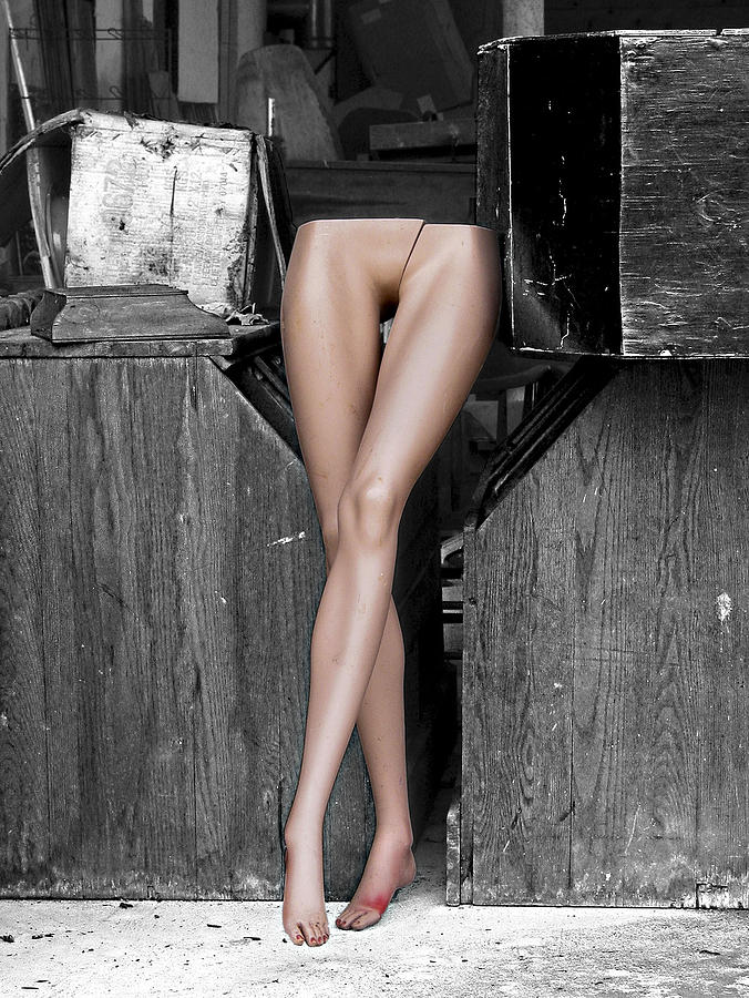 Legs Photograph - Legs by Robert Sako