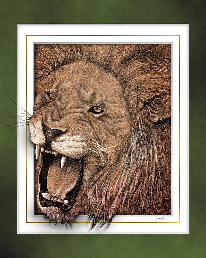 Lion Drawing - Leo by Jim Turner