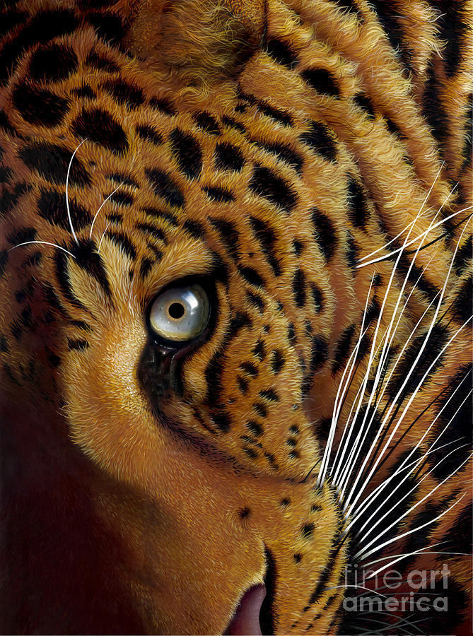 Leopard Painting - Leopard by Jurek Zamoyski