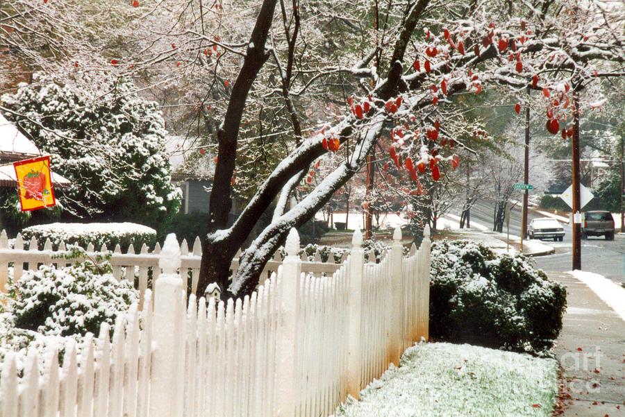 Let It Snow Photograph