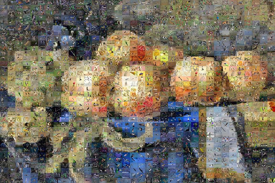 Mosaic Digital Art - Liegeois Nature Morte by Gilberto Viciedo