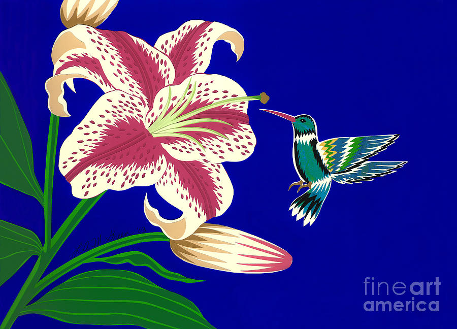 Nature Drawing - Lily And Hummingbird by Lucyna A M Green
