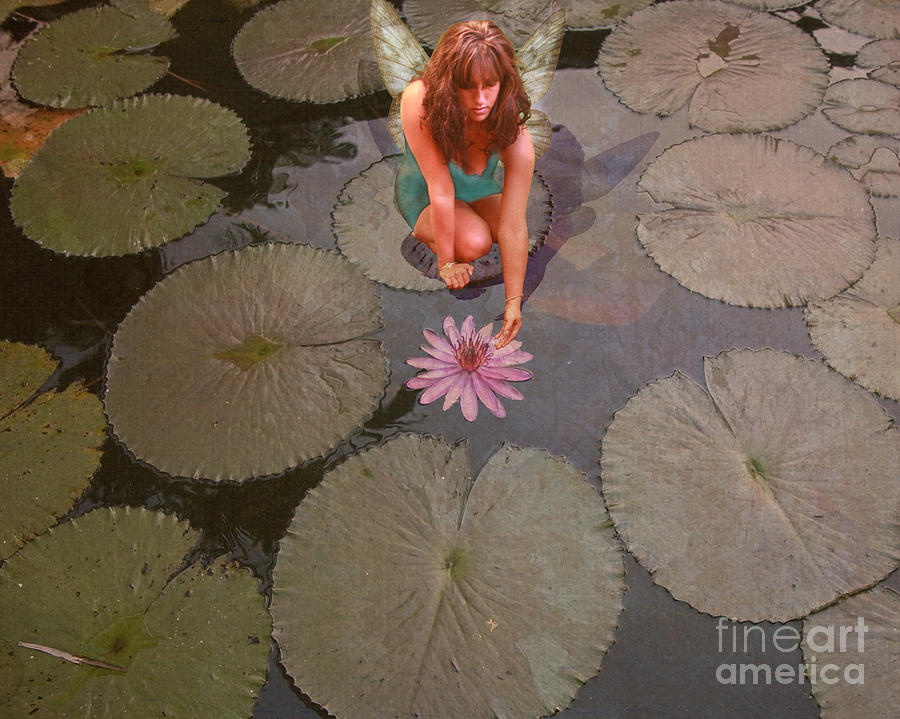 Fairy Photograph - Lilypad Fairy by Patricia Ridlon