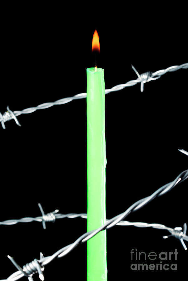 Barbed Wire Photograph - Lit Candle Surrounded By Barbed Wire by Sami Sarkis