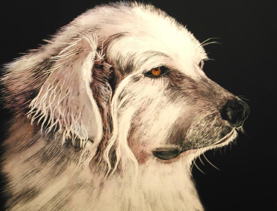 Pet Portraits Painting - Little Bear by Katherine McDermott