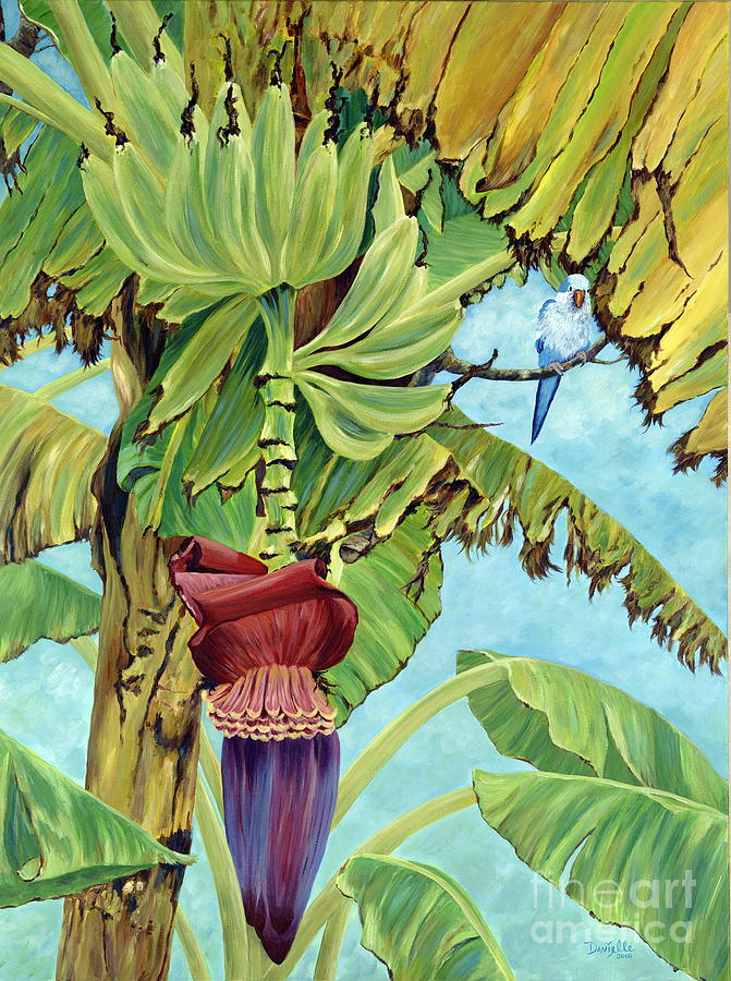 Tropical Painting - Little Blue Quaker by Danielle  Perry