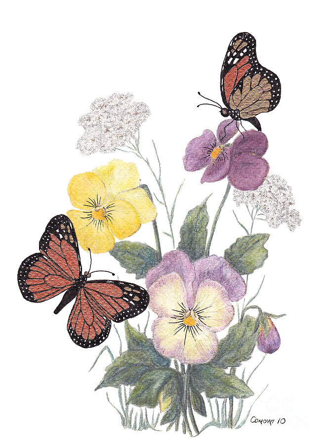 Pansies Painting - Little Heartsease by Stanza Widen