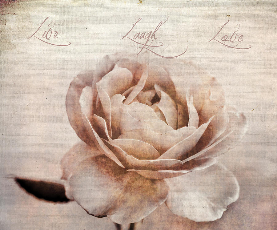 Aged Photograph - Live Laugh Love by Darren Fisher