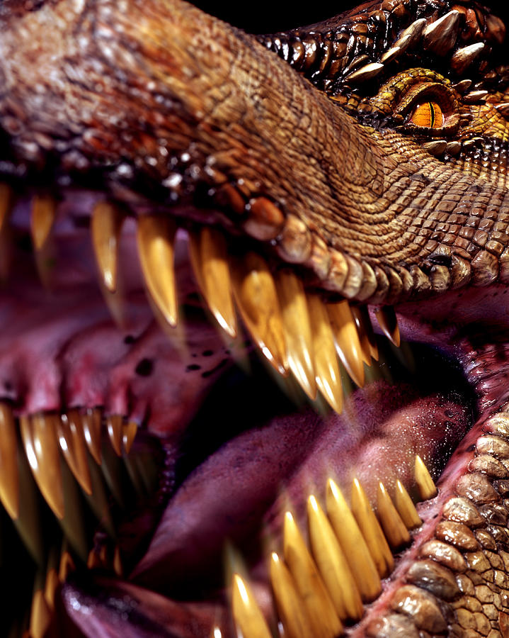 Tyrannosaurus Rex Photograph - Lizard King by Kelley King