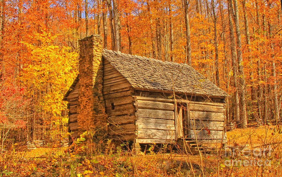 Log Cabin In The Woods Photograph By Geraldine Deboer