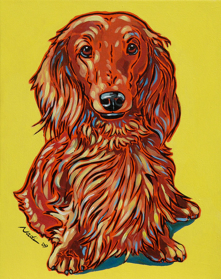 Dachshund Painting - Long Haired Dachshund by Nadi Spencer