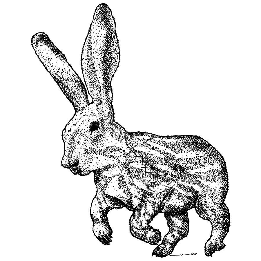 Drawing Drawing - Longear by Karl Addison