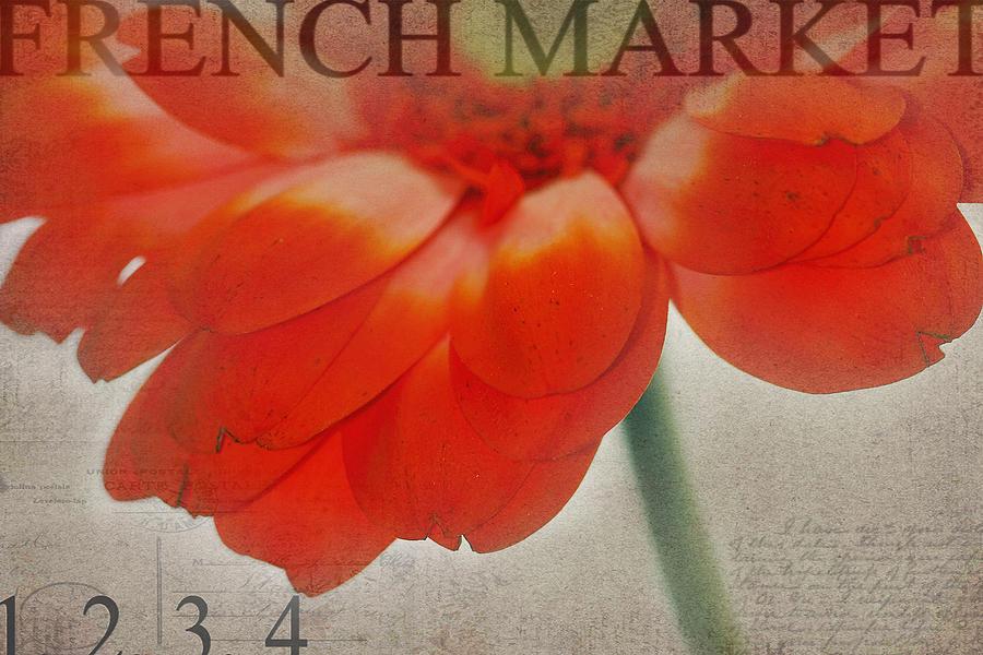 Orange Photograph - Look Inside by Rebecca Cozart
