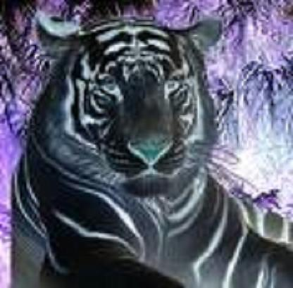 Look With Inner Tiger  Digital Art