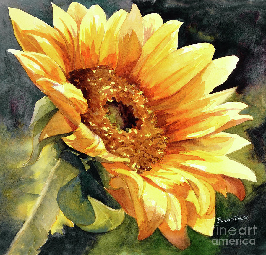 Sunflower Painting - Looking To The Sun by Bonnie Rinier