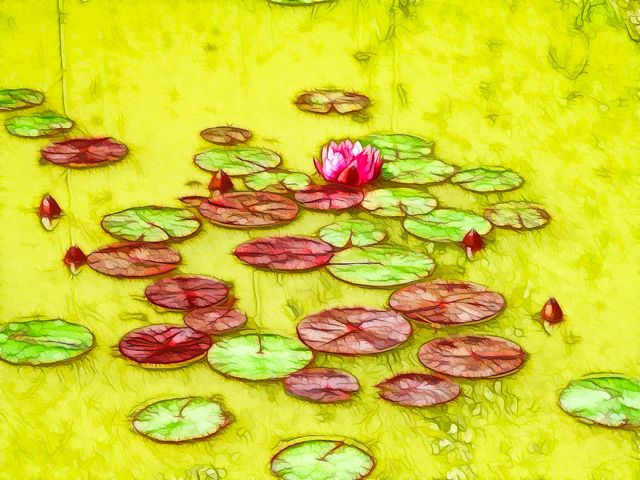 Lotus With Dews Painting - Lotus Flower On The Water 2 by Lanjee Chee