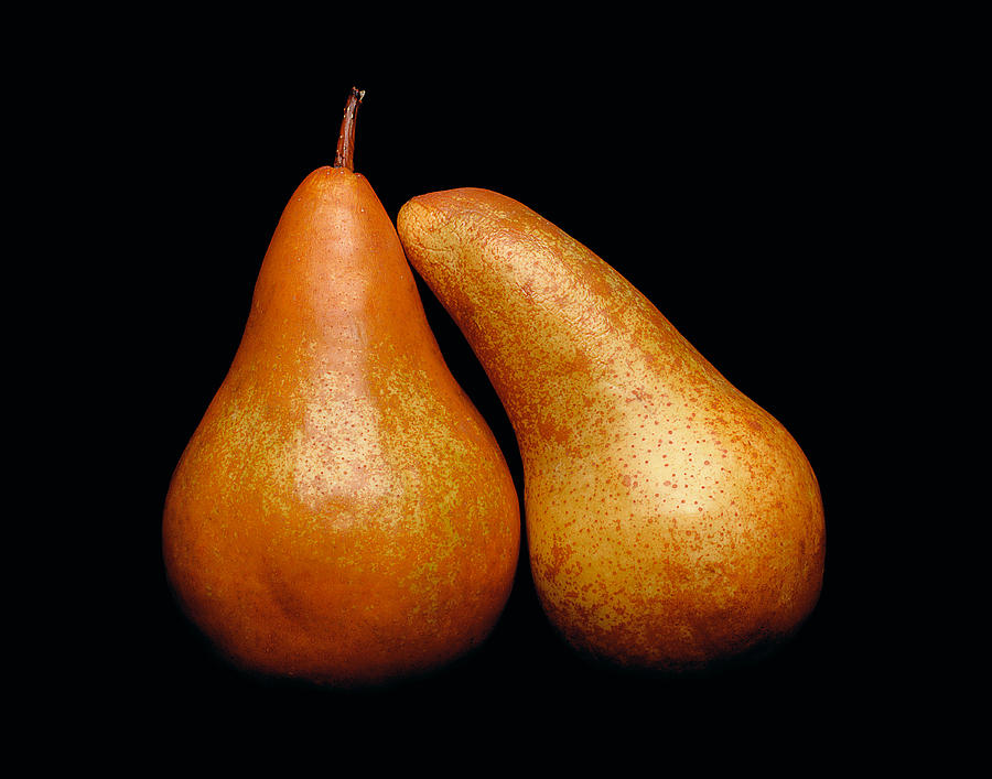Pear Photograph - Loving Pair by Gary Cloud