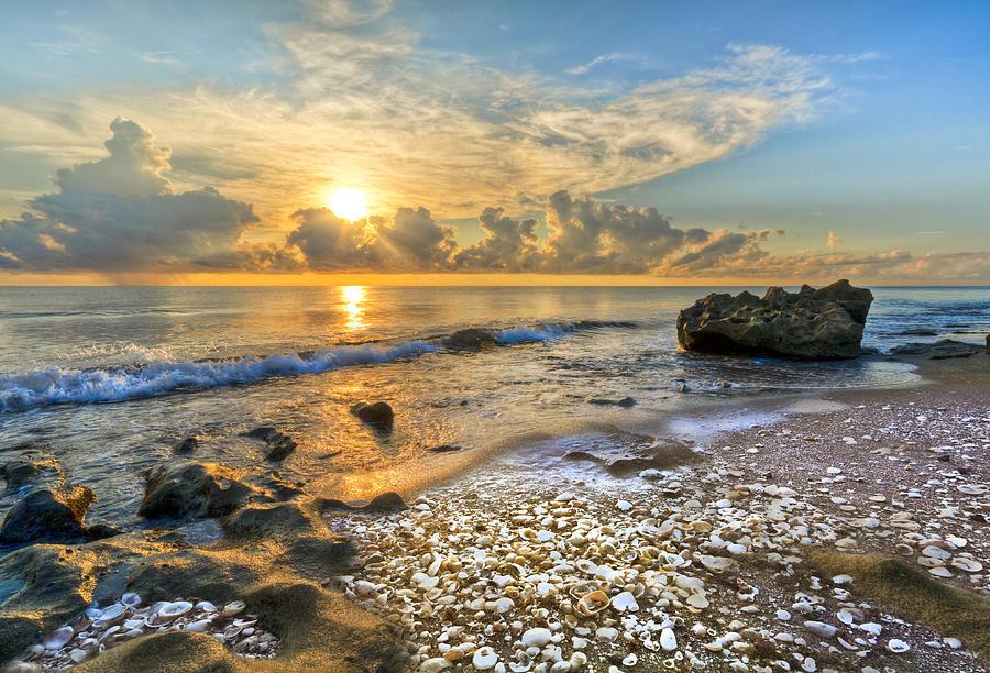 Blowing Photograph - Low Tide by Debra and Dave Vanderlaan
