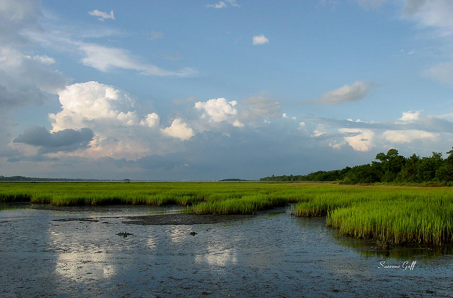 Huntington Beach State Park Photograph - Low Tide by Suzanne Gaff
