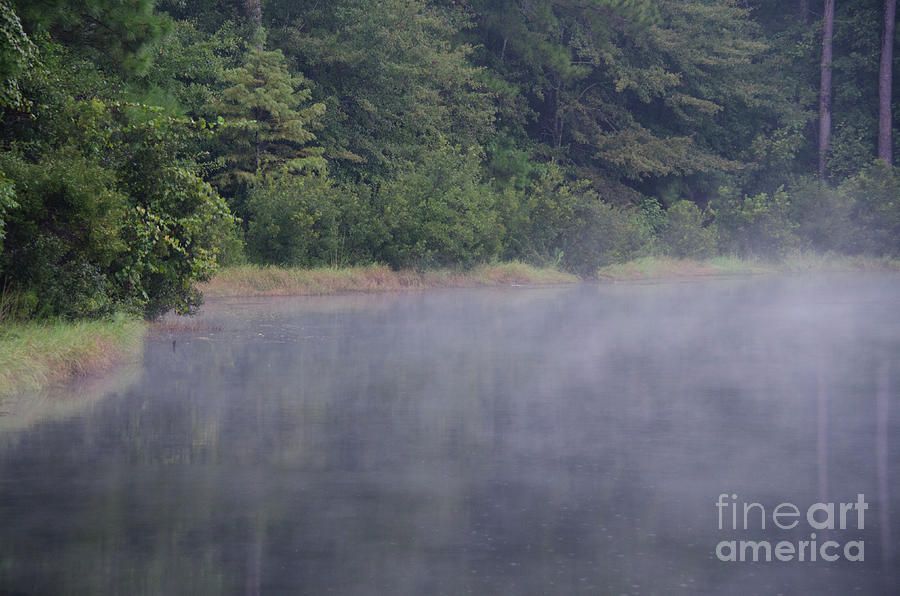 Lowcountry Morning Lake Fog Photograph