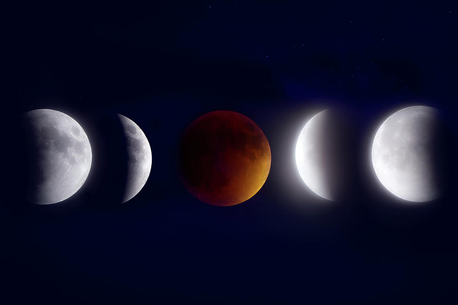 Lunar Eclipse Montage Photograph