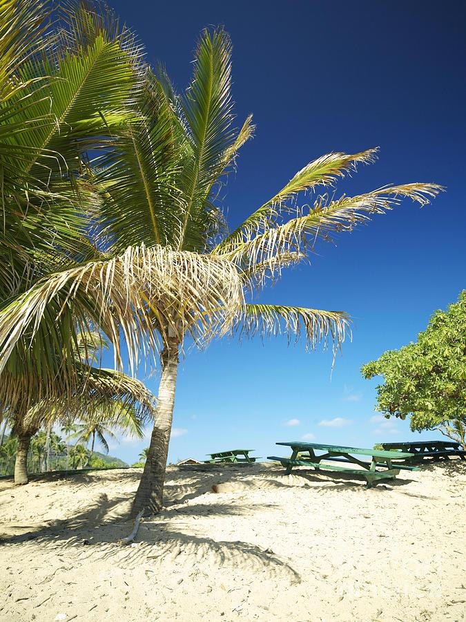 Beach Photograph - Lydgate Beach On Kauai by Kicka Witte - Printscapes