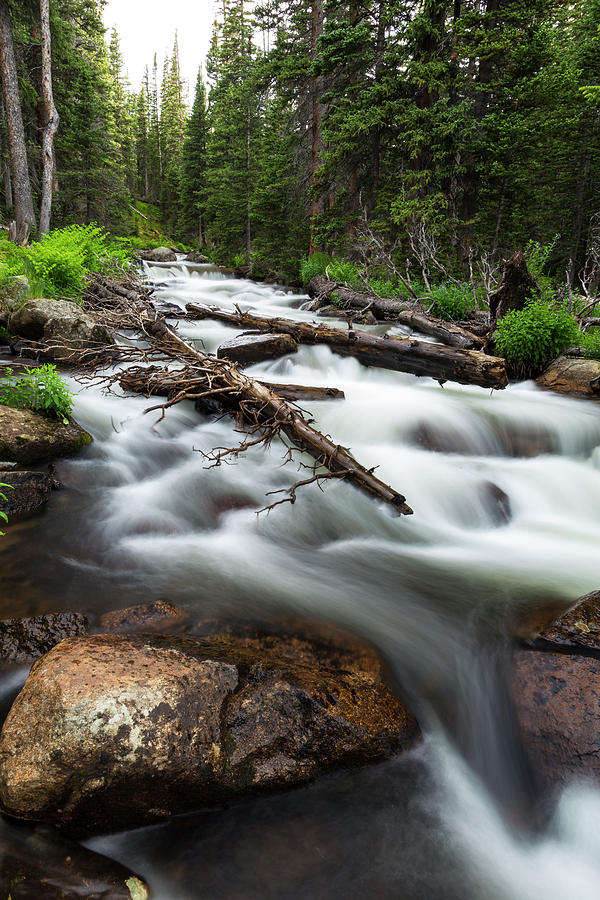 Magic Mountain Stream Photograph