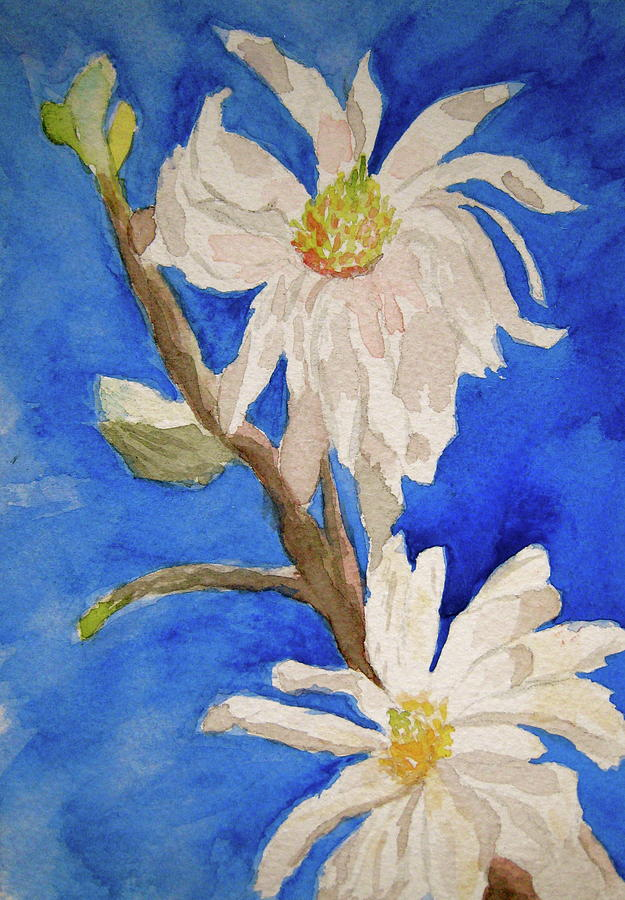Magnolia Stellata Blue Skies Painting
