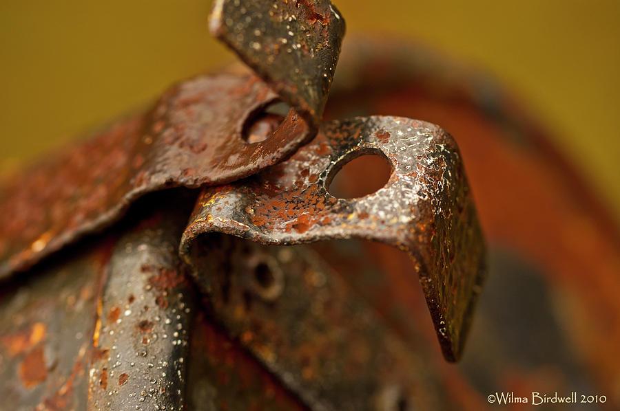 Rusty Photograph - Mail Box Latch by Wilma  Birdwell