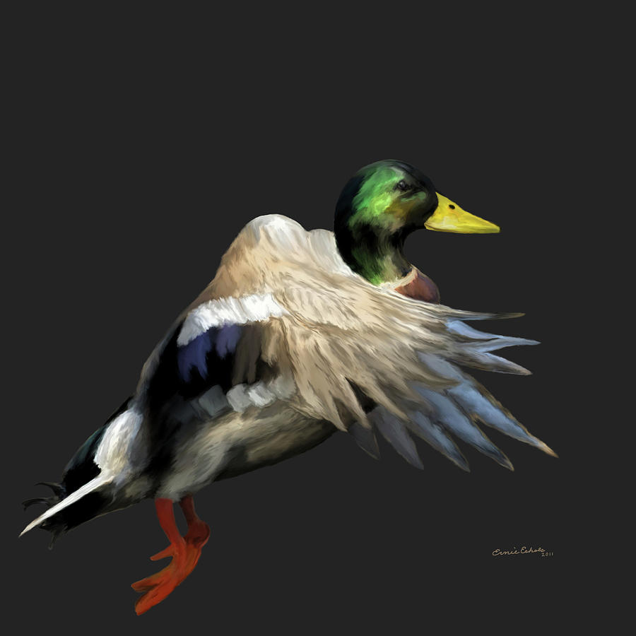 Animals Painting - Mallard Freehand 1 by Ernie Echols