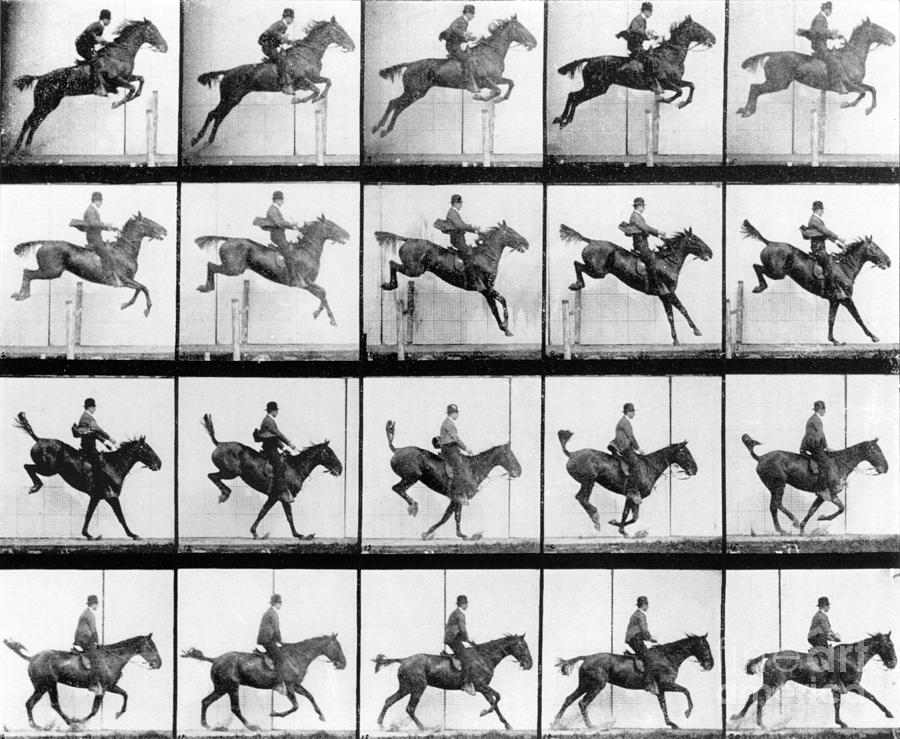 Muybridge Photograph - Man And Horse Jumping by Eadweard Muybridge