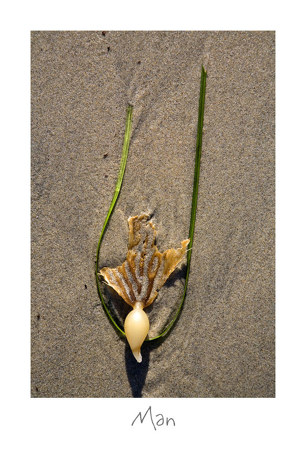 Beach Art Photograph - Man by Peter Tellone