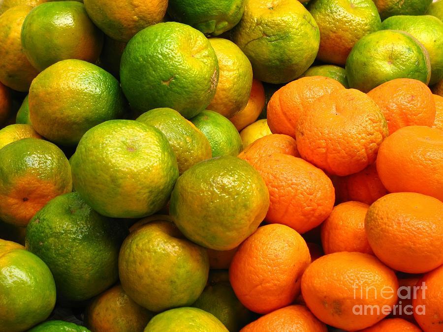 Tangerine Photograph - Mandarins And Tangerines by Yali Shi