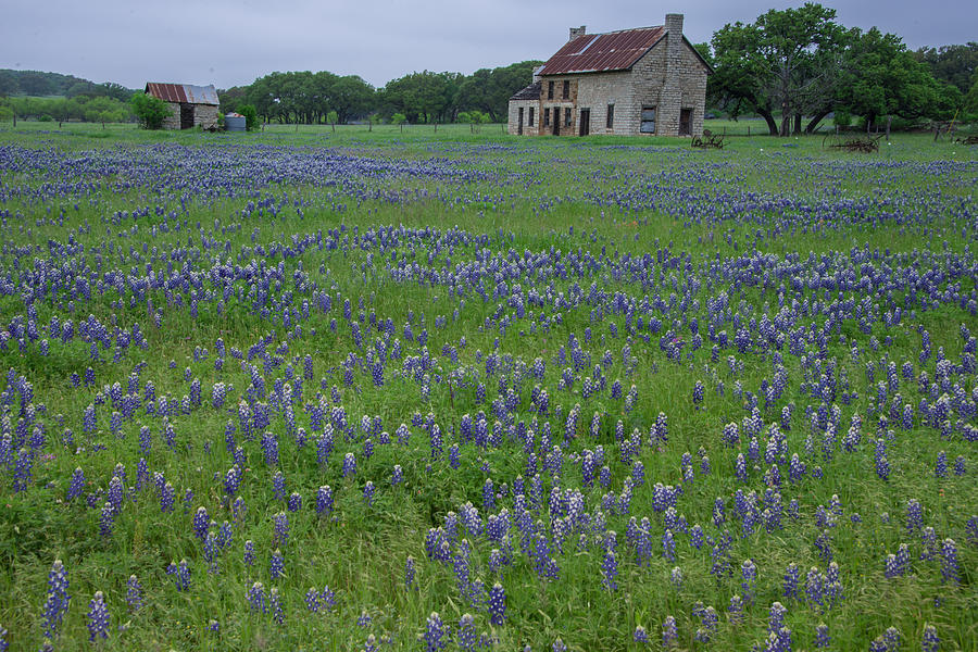 marble falls singles over 50 Texas singles in agriculture  9:00 am leave comfort inn and suites—carpool to texas exotic resort zoo near johnson city $1400–$1650  the marble falls .