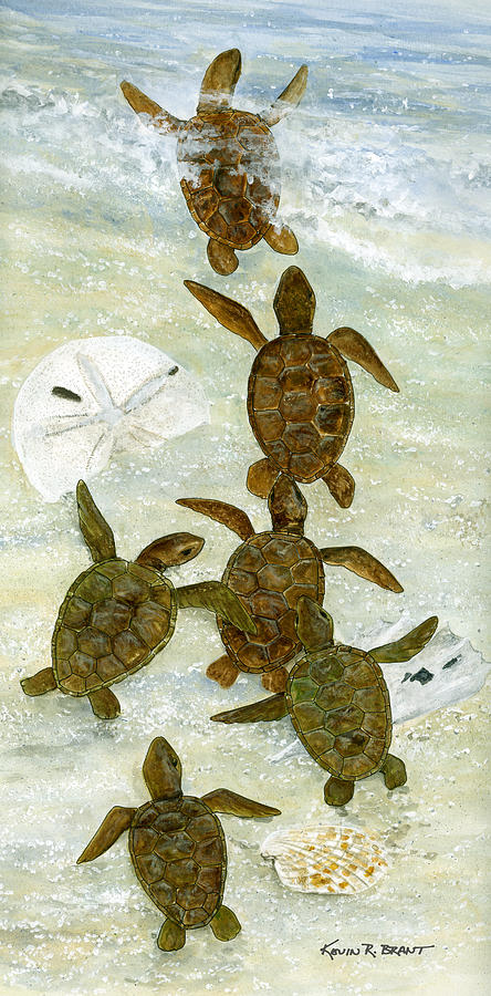 Turtles Painting - March To The Sea by Kevin Brant