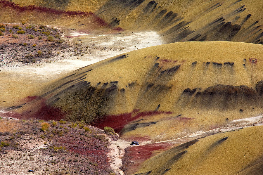 The Strange Stains And Markings On The Painted Hills National Monument In Oregon Photograph - Marked Hills by Mike  Dawson