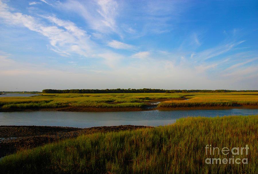 Marsh Photograph - Marshland Charleston South Carolina by Susanne Van Hulst