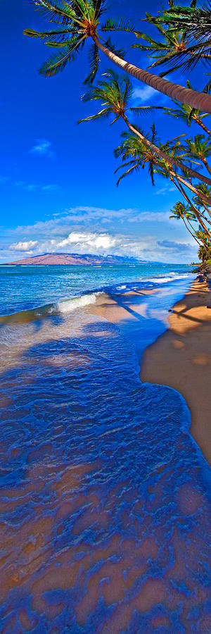 Maui Hawaii Palms Ocean West Maui Photograph - Maui Palms by James Roemmling